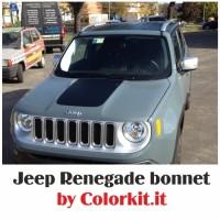 Bonnet Renegade 2014