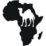 Africa dromedario