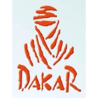 Tuareg e scritta Dakar cm 18,5x25 3D