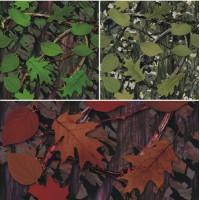 Camo foglie 1 - Pellicola 3M