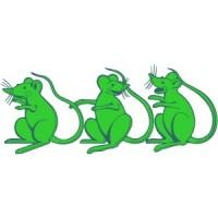 Sorci verdi (coppia)