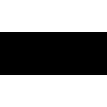 Drago 06 (varie misure)