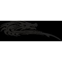 Drago 07 (varie misure)