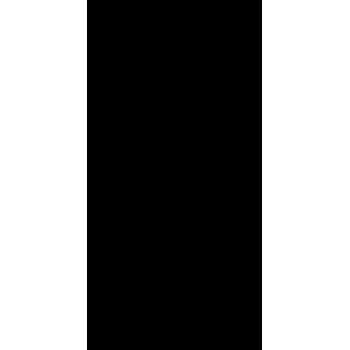 Fenice 01 (varie misure)