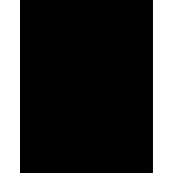Fenice 02 (varie misure)