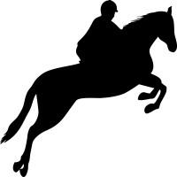 Cavallo 004 Horse jumping (varie misure)