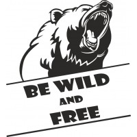 Orso- Be wild and free