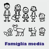 Adesivi famiglia medi