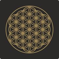 Fiore della vita 01 (varie misure)