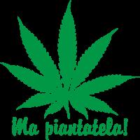 Foglia Marijuana (Varie misure)