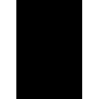 Decorazione floreale 01 (Varie misure)