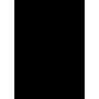 Decorazione floreale 02 (varie misure)