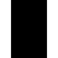 Decorazione floreale 03 (varie misure)