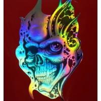 Skull cm 10x16