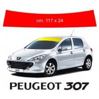 Fascia Parasole per Peugeot 307