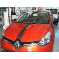 Striscia Centrale per Renault Clio 2012