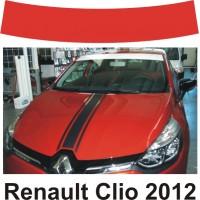 Fascia Parasole per Renault Clio 2012