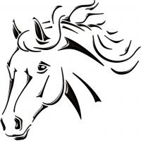 Cavallo 0231 cm 28x283D