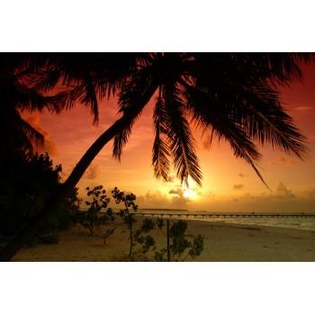 Spiaggia 05