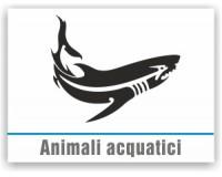 Animali Acquatici