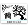 Fiori e piante