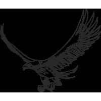 Aquila 03 (varie misure)