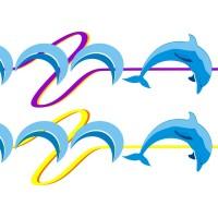 Delfini Kit